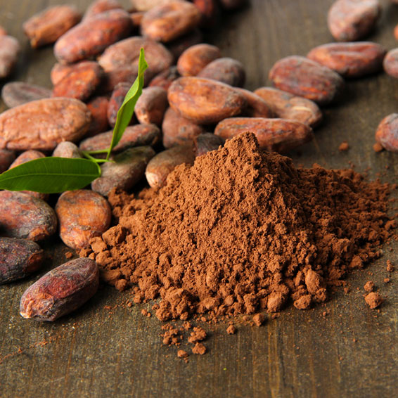 Cocoa-based Support for Energy, Cognitive Acuity, Mood & Heart Health