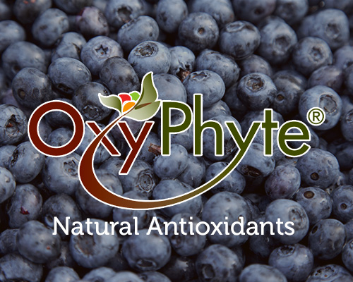 Oxyphyte® Ingredients Show Cellular Uptake and Activity Using Scientific Award-Winning CAP-e Assay